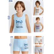 Комплект для мальчика  2574.3574  ТМ Baykar