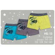 Трусы-шорты для мальчика набор НБ13 (ребана) Бемби