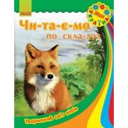 Читаємо по складах Тваринний світ лісів
